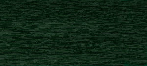 Deco RAL 6009 – Fir Green